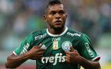 Borja celebra gol no Palmeiras