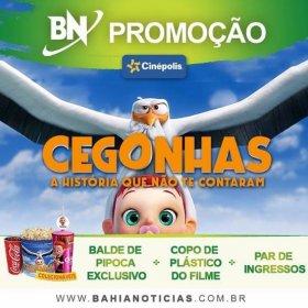 Promoção BN: CEGONHAS - A história que não te contaram