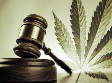 STF define que tráfico de drogas praticado por réu primário não é crime hediondo