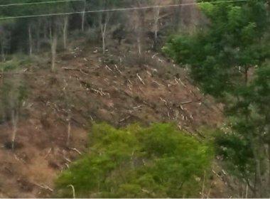 MP ajuíza ação contra dono de fazenda que devastou área da Mata Atlântica em Itagi