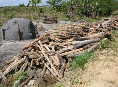 MPF recomenda que Ibama e Inema fiscalizem produção de carvão em Guanambi