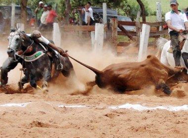 Janot ajuíza ações contra leis que permitem vaquejadas na Bahia, Amapá e Paraíba