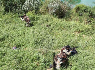 Polícia usa drone e descobre plantação com 200 mil pés de maconha em Curaçá e Abaré