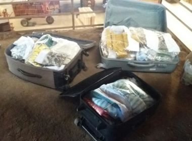 Vitoria da Conquista: 150kg de drogas são incineradas pela DTE
