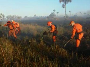 LEM: Incêndio atinge área de proteção ambiental por 3 dias; alerta de fogo continua