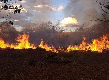 Incêndio atinge vegetação às margens em rodovia de Barreiras; ninguém se feriu