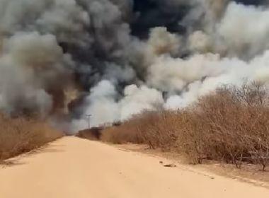 Pilão Arcado: Incêndio em zona rural alcança 100 km de extensão; veja vídeo