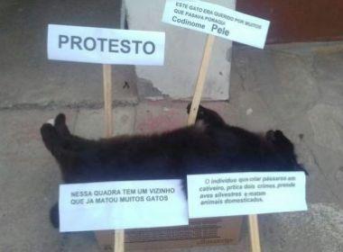 Conquista: Moradores protestam contra envenenamento de gatos
