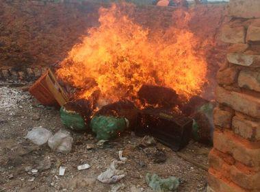 Senhor do Bonfim: Polícias incineram mais de 220 kg de maconha, crack e cocaína