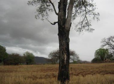 Raio mata criança de 11 anos na zona rural de Catolândia