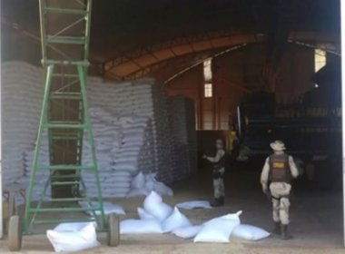 Barreiras: Grupo rouba mil sacas de feijão após invadir fazenda