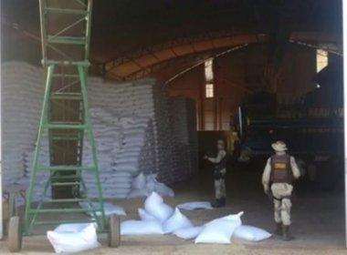 Oeste: Produtores cobram policiamento para barrar roubo de feijão