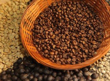 Chapada Diamantina é destaque no maior concurso de qualidade de cafés do Brasil