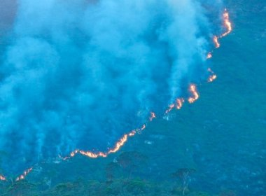 Jacobina: Incêndio atinge mesma área devastada em 2015