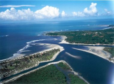 Cairu: MPF denuncia empresa ADPK por desmatamento de 1,75 ha de Mata Atlântica