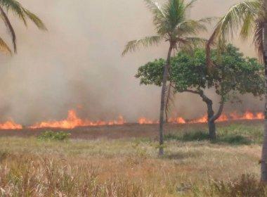 Rio de Contas: Incêndio em parque natural é extinto, declara Corpo de Bombeiros