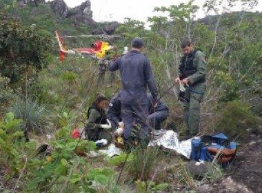 Homem é morto por tamanduá-bandeira em Minas Gerais