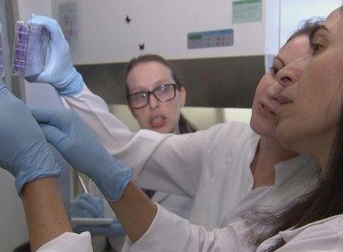 Pesquisadores descobrem composto do chá verde que inibe zika vírus