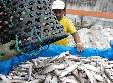 Governo deve lançar decreto que endurece regras de auxílio pago a pescadores