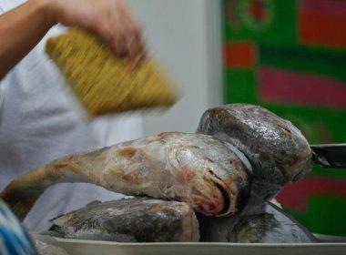 Biólogo alerta que ligação entre doença desconhecida e peixes não foi comprovada