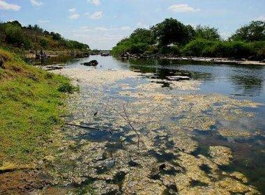Bahia recebe R$ 2,83 mi do Fundo Nacional do Meio Ambiente para recuperar nascentes