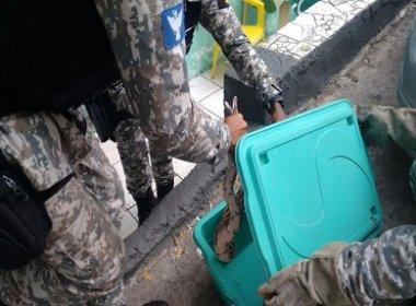 Animais silvestres são resgatados pela Guarda Civil em quatro bairros de Salvador
