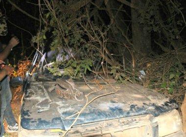 Pais morrem em acidente de carro no MS e filha de 5 anos anda por 1km por ajuda