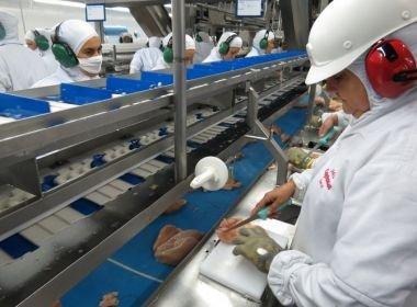 China vai voltar a comprar carne brasileira, anuncia ministro