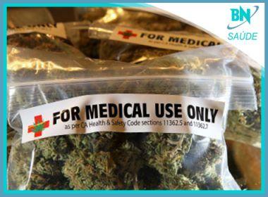 Aprovação do uso de maconha medicinal na Argentina é destaque na coluna Saúde