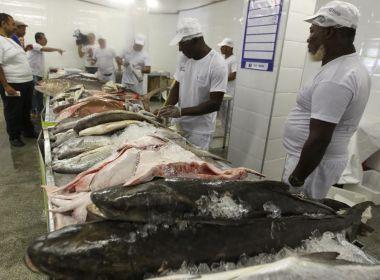 Peixes e mariscos são vendidos com desconto de 38% no Terminal Pesqueiro