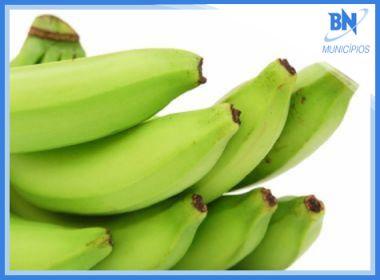 Municípios: Estudante de Barreiras leva projeto de 'banana verde' para evento no Equador