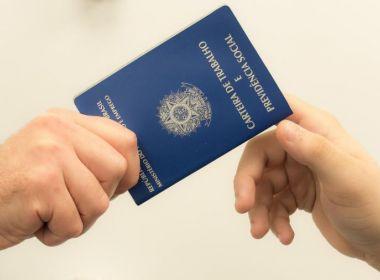IBGE abre inscrições para Censo Agropecuário 2017; edital tem 3 mil vagas para a Bahia