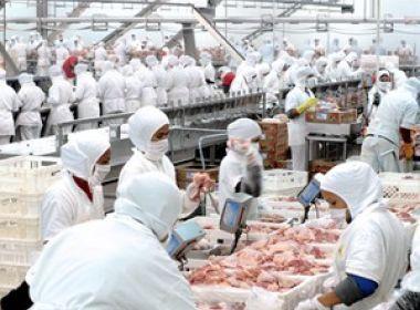 China faz investigação sobre importação de frango brasileiro
