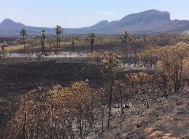 Incêndio na Chapada dos Veadeiros está controlado, afirma diretor da reserva