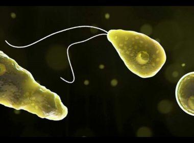 Argentina registra primeiro caso de ameba mortal que 'come cérebro'