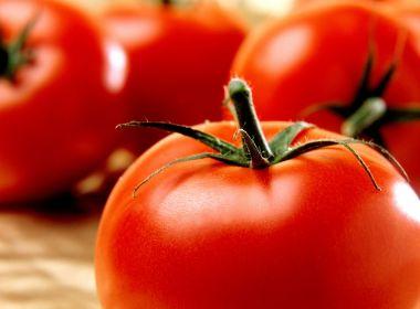 Estudo aponta que comer tomate ou maçã retarda envelhecimento dos pulmões