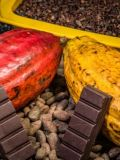 Viver Bem: 'Alimento dos deuses', chocolate tem nutrientes e efeito estimulante