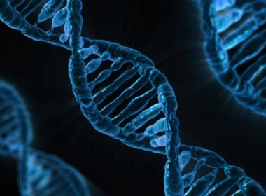Pesquisa aponta que maioria da população possui genes que causam doenças hereditárias