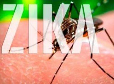 Zika causa surdez em 6% dos bebês de mães infectadas, aponta estudo da Fiocruz