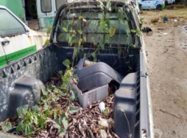 SAJ: Veículos abandonados de combate ao Aedes são identificados como criadouros