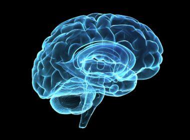 Alterações genéticas recém-descobertas aumentam risco de câncer cerebral