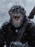 'Planeta dos Macacos: A Guerra' eleva papel dos símios e encerra trilogia de forma competente
