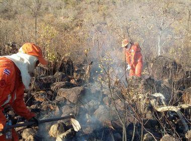 LEM: Incêndio atinge vegetação em fazenda