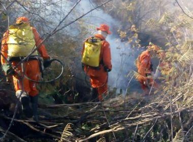 Rio do Pires: Incêndio chega perto de área urbana