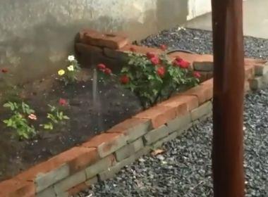 LEM: Chuva de granizo chama a atenção de moradores
