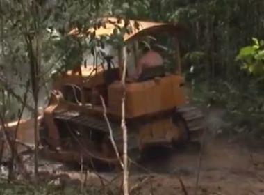 Cabrália e Belmonte lideram desmatamento nacional; Bahia é 1ª em destruição de mata