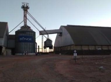 Formosa do Rio Preto: Grupo rouba mais de 300 toneladas de soja e suspeito é preso