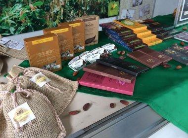 Governo apresenta parque para desenvolvimento do cacau e chocolate no sul da Bahia